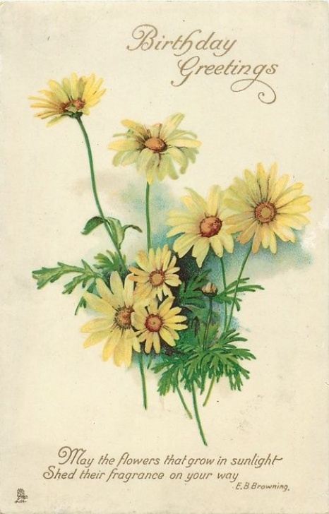 Marvelous Poems About Yellow Flowers Pics670