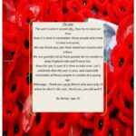 Marvelous Poems To Compare With Poppies Image783
