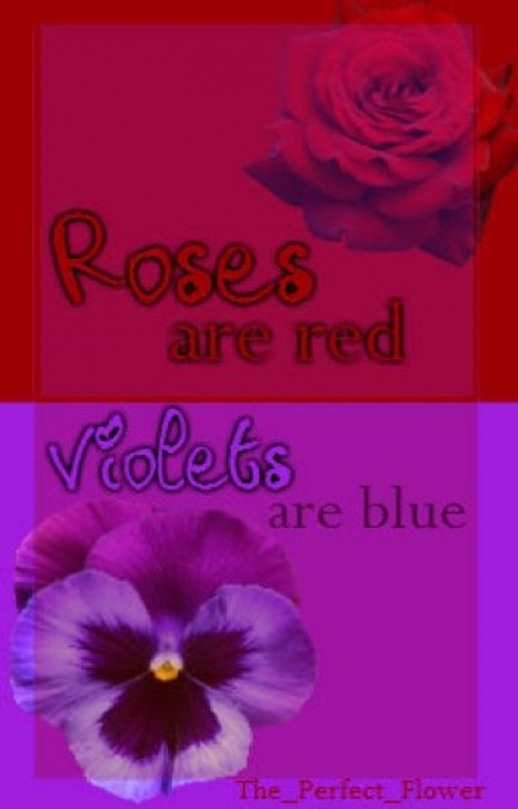 Marvelous Roses Are Blue Violets Are Blue Image975