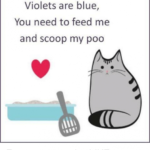 Marvelous Roses Are Red Violets Are Blue Poems For Valentines Day Picture452