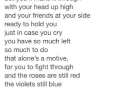 Marvelous Roses Are Red Violets Are Purple Poem Photo865