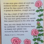 Marvelous The Rose And The Gardener Poem Pic878