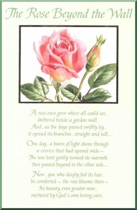 Marvelous Yellow Roses Poem Image728