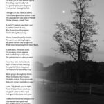 Most Famous A Tree Is A Tree Poem Pics150
