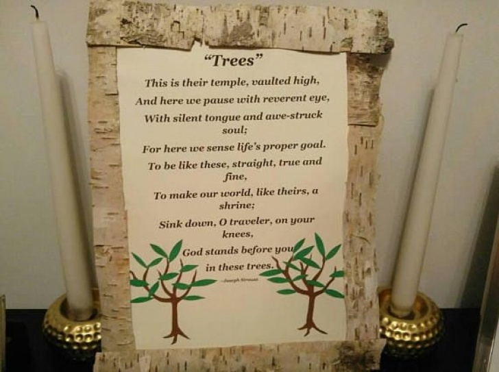 Most Famous Birch Tree Poem Image474