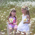 Most Famous Buttercups And Daisies Poem Pic763