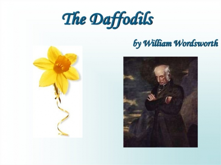Most Famous Daffodils By Williams Wordsworth Pics520