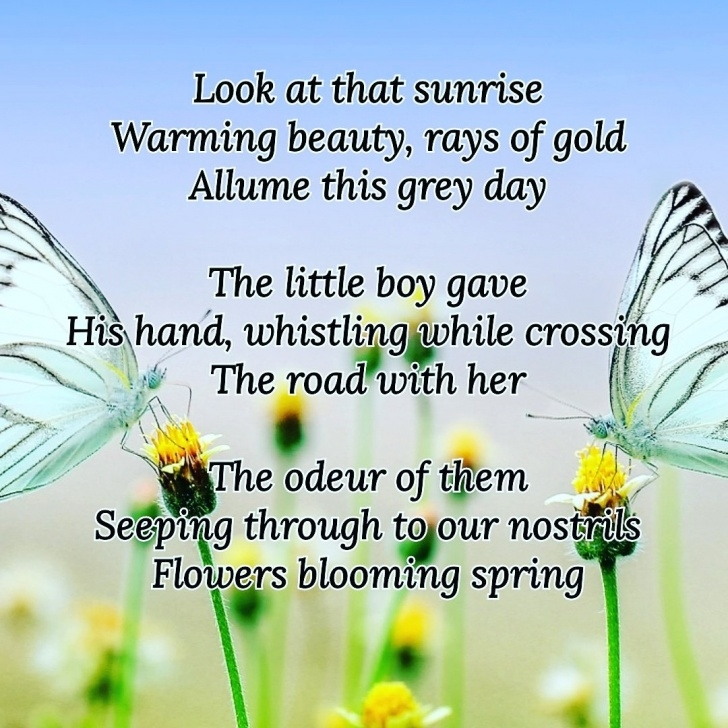 Most Famous Haiku Poems About Spring Flowers Pic144
