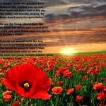 Most Famous In Poppies Fields Poem Pic993