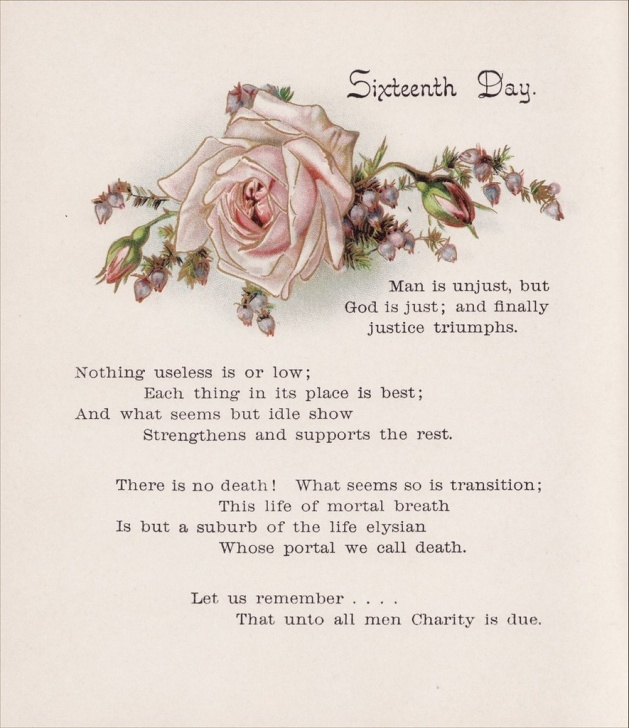 Most Famous Poem On Flower Rose Pics091