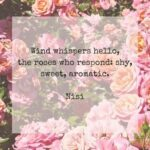 Most Famous Poems About Pink Flowers Pics387