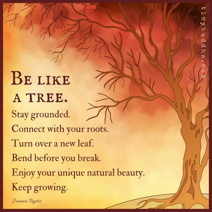 Most Famous Poems About Trees And Roots Picture130