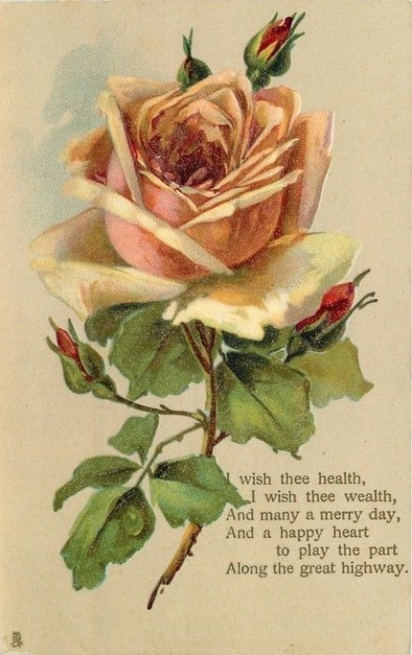 Most Famous Rose Painted Poem Pic541