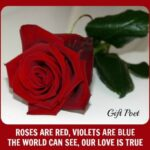 Most Famous Roses Are Red Violets Are Blue Poem Love Pics692