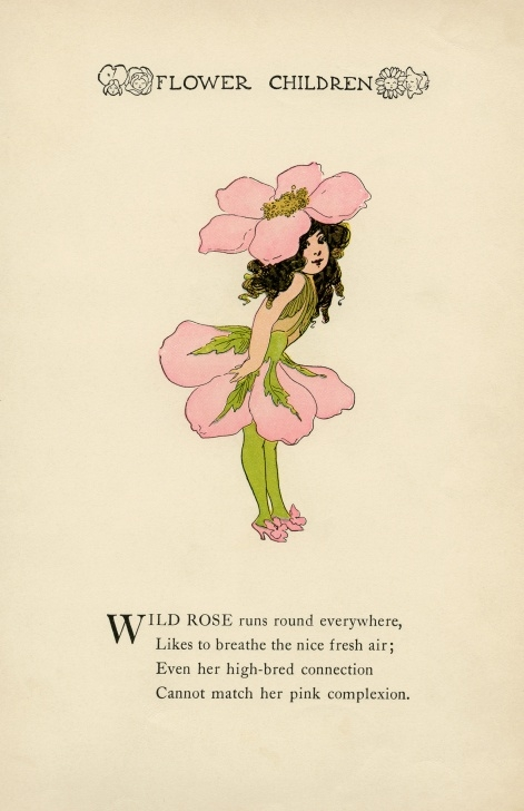 Most Famous Short Poem About Rose Image420