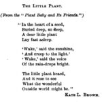 Most Famous The Little Plant Poem Photo570