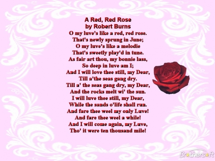 Most Famous The Red Rose Poem Picture066