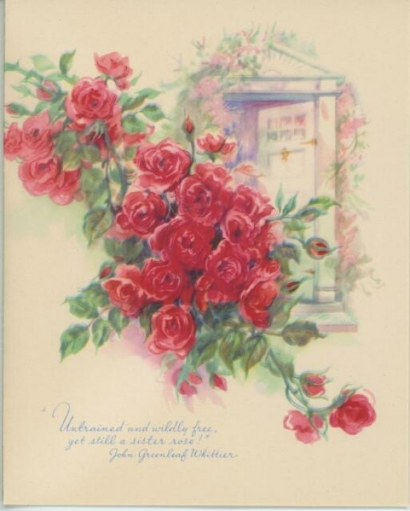 Most Famous The Wild Rose Poem Image641