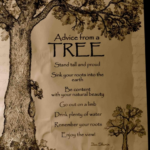 Most Iconic A Tree Is A Tree Poem Picture987