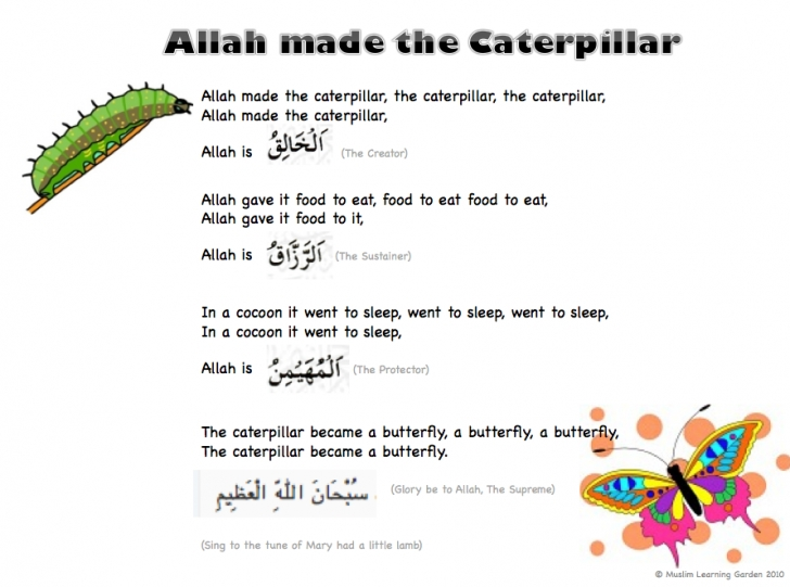 Most Iconic Caterpillar Garden Poem Photo449
