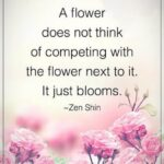 Most Iconic Poems About Flowers Blooming Pics947