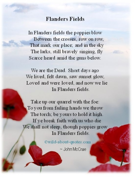 Most Iconic Poppies In July Poem Pics849