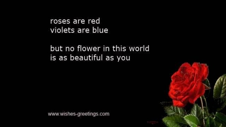 Most Iconic Roses Are Red Violets Are Blue Poem Love Photo722