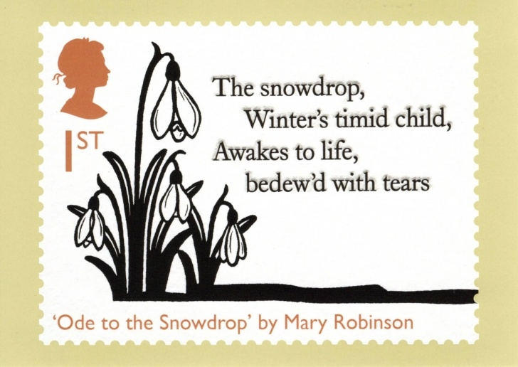 Most Iconic To A Snowdrop William Wordsworth Image558