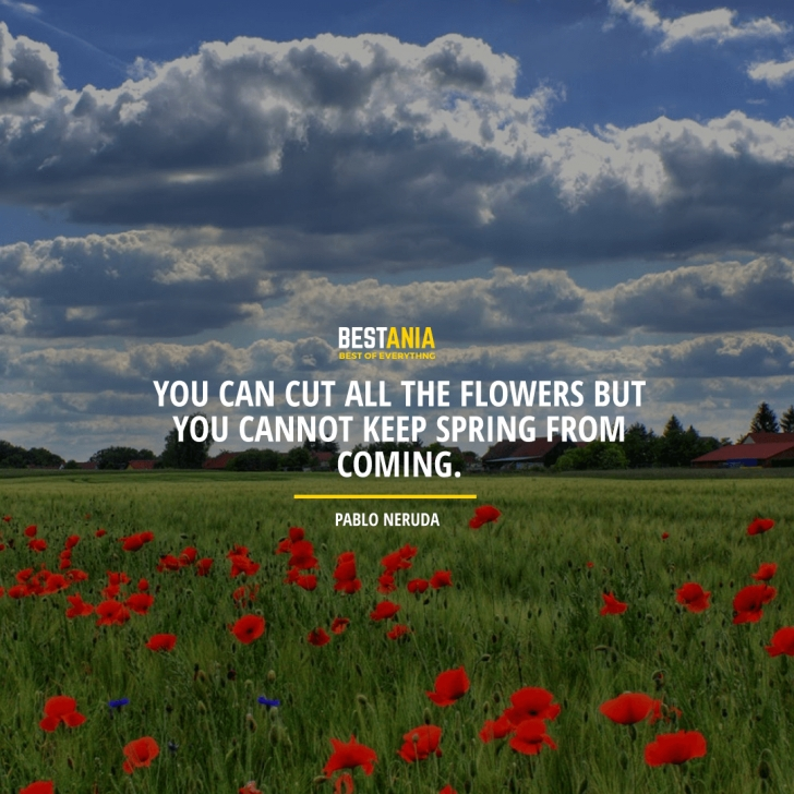 Most Iconic You Can Cut All The Flowers Neruda Poem Image480