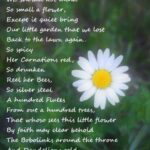 Most Popular About Flowers Poem Pic945