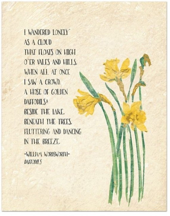 Most Popular Famous Poem About Daffodils Photo362