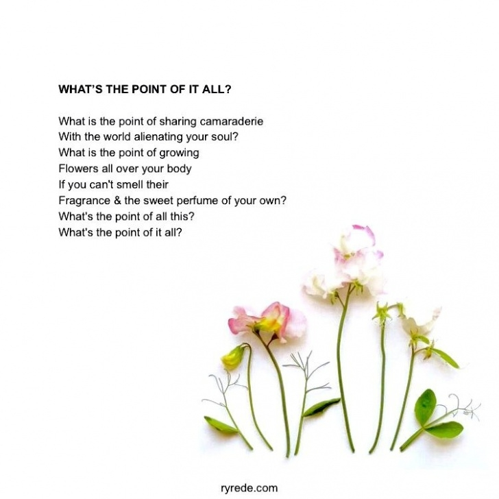 Most Popular Famous Poems About Flowers Photo933