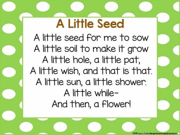 Most Popular Flower Poems Rhyme Picture559