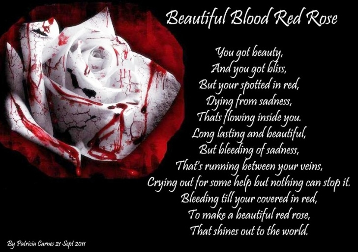 Most Popular Life Is Like A Rose Poem Pics693
