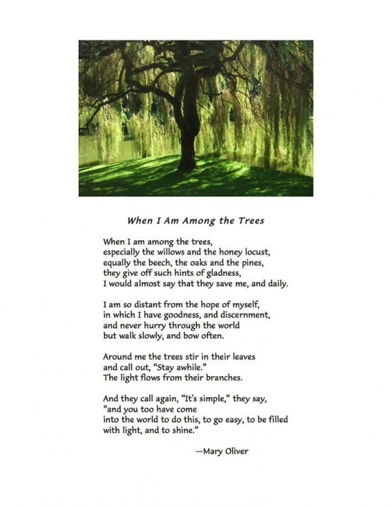 Most Popular Poem About Trees And Nature Pics436