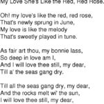 Most Popular Robert Burns Rose Poem Photo473