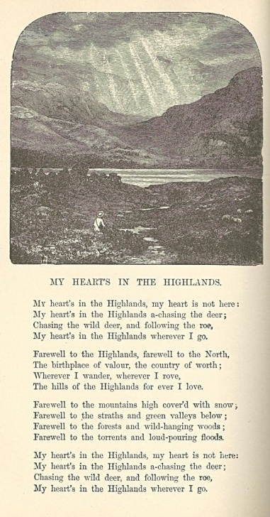 Most Popular Robert Burns To A Mountain Daisy Image639