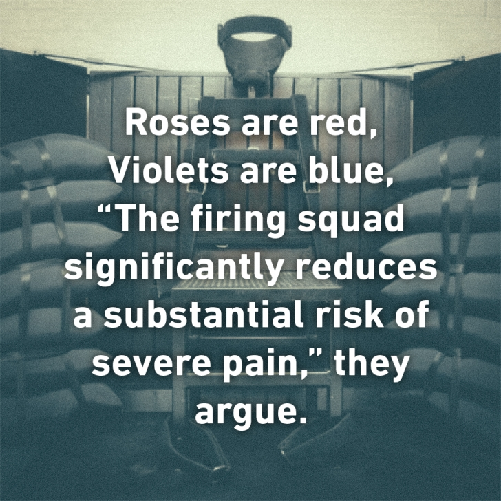 Most Popular Roses Are Red Violets Are Red Photo172