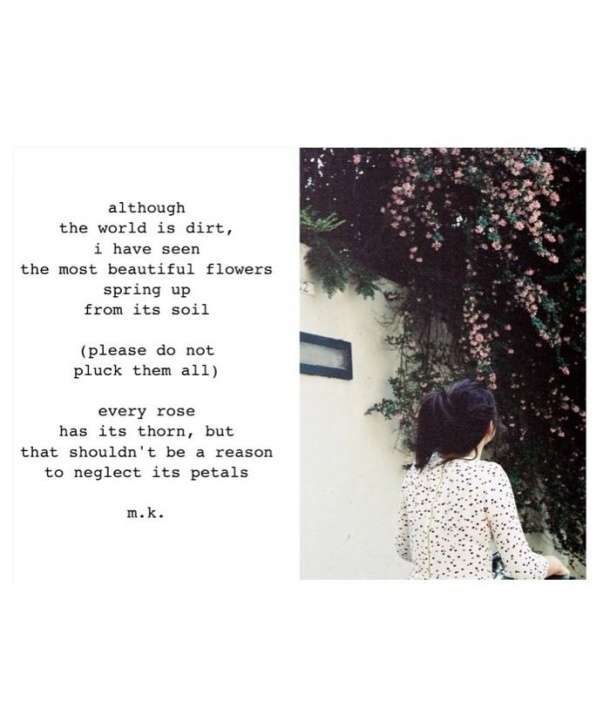 Most Popular The Blossom Poem Picture233