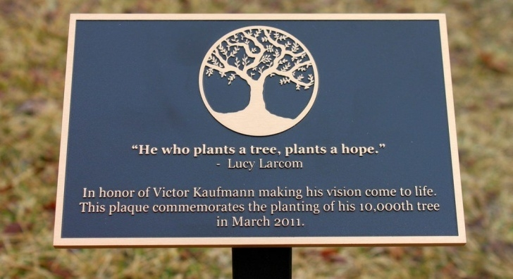 Most Popular Tree Dedication Poem Photo177