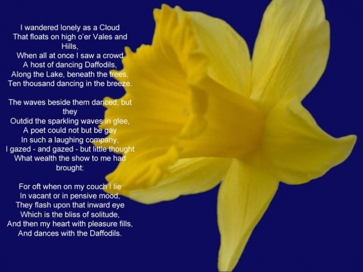 Most Popular William Wordsworth Poem Daffodils Photo808