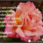 Motivational A Dozen Roses Poem Photo999