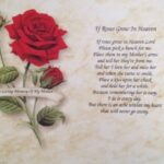 Motivational A Rose For My Mother Poem Picture575