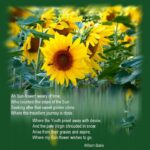 Motivational Ah Sunflower William Blake Image259
