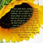 Motivational Famous Poems About Sunflowers Image916