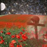 Motivational Flanders Field The Poppies Grow Photo918