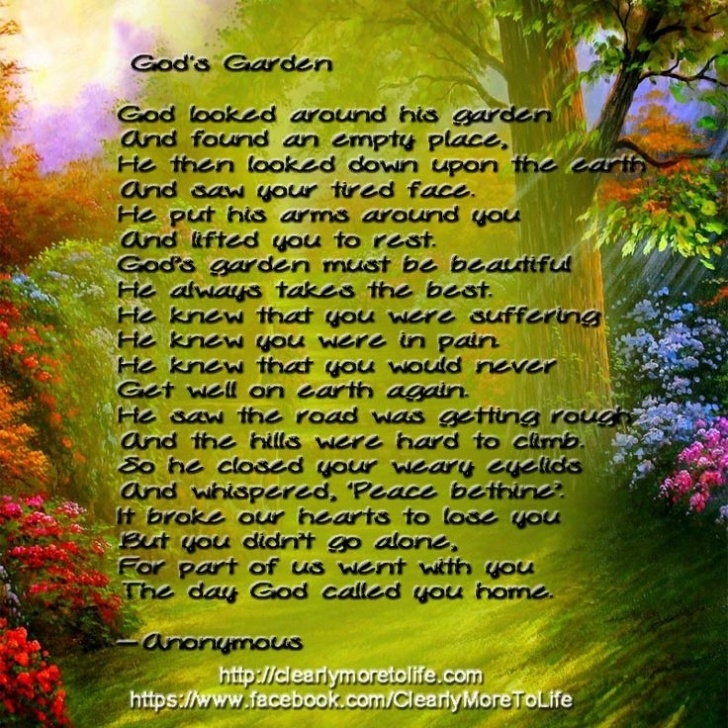 Motivational Flowers In My Garden Poem Picture048