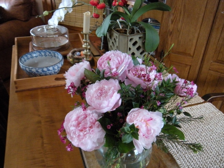 Motivational Mary Oliver Peonies Picture536