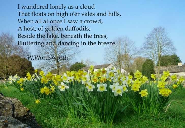 Motivational Poem On Daffodils In English Image280