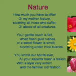 Motivational Poem On Flowers For Class 3 Pics220